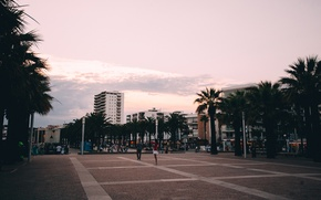 Picture palm trees, Spain, Salou