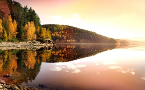 Picture reflection, shore, leaves, the evening, water, yellow, The Ore Mountains, The erzgebirgskreis district, autumn, nature, ...