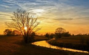 Picture autumn, trees, landscape, nature, river, Bank