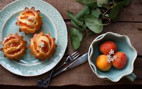 Picture table, branch, fruit, cakes, sweet, cupcakes, apricots, Julia Khusainova
