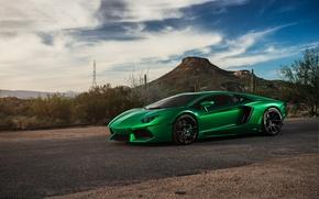 Picture green, supercar, Lamborghini Aventador