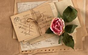 Picture flower, retro, rose, vintage, rope, vintage, letters, cards