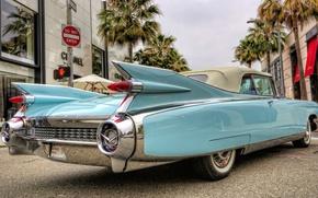 Picture Eldorado, Cadillac, Cadillac, Eldorado, Convertible, 1959, Biarritz