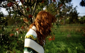 Picture girl, grass, trees, nature, woman, flowers, model, mood, bokeh, redhead, petals, female, poncho, Shannon Murray