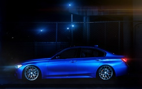 Picture blue, bmw, BMW, the fence, profile, 335i, f30
