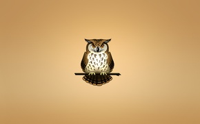 Wallpaper owl, bird, branch, light background, owl