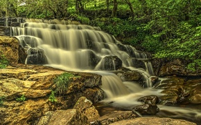 Picture forest, trees, river, stones, rocks, waterfall, stream, cascade