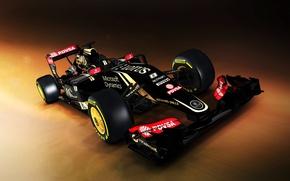 Picture Lotus, Hybrid, 2015, E23