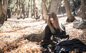 Picture autumn, leaves, girl