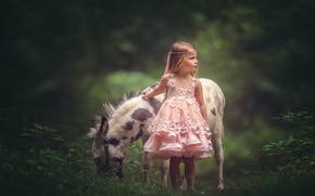 Picture dress, girl, donkey