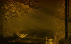 Picture road, landscape, night