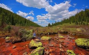 Wallpaper stones, swamp, Clouds