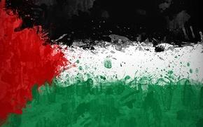 Picture paint, flag, flag, Palestine, Palestine