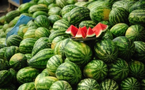 Picture red, green, a bunch, a lot, watermelons, slices, whole