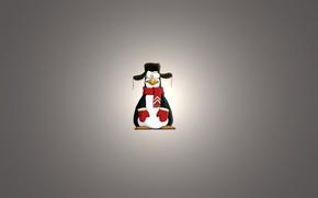 Picture minimalism, scarf, penguin, light background, ushanka, uruski, penguin