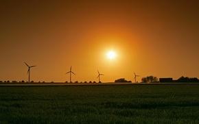Picture field, the sun, windmill