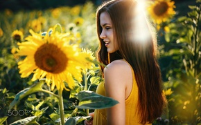 Picture summer, girl, the sun, light, sunflowers, smile