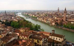 Picture roof, river, Italy, river, Italy, Verona, Verona, roof, Adige River, the river Adige, Sant'anastasia Church, …