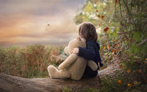 Picture autumn, nature, toy, boy, bear, log, child, Teddy bear
