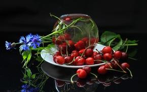 Wallpaper cherry, berries, cornflower
