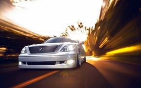 Picture Lexus, white, front, VIP, LS430