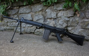 Picture wall, rifle, automatic, FN FAL, (STG58)