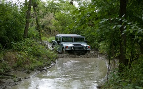 Picture forest, trees, dirt, SUV, the roads, Hummer, civil