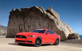 Picture Mustang, Ford, Muscle, USA, Supercar, Competition, 2015
