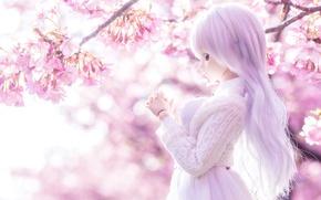 Picture light, mood, spring, doll, Sakura