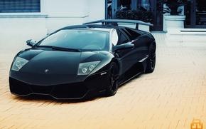 Picture black, lamborghini, black, murcielago, Lamborghini, Murcielago, lp670-4 sv