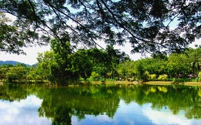 Picture greens, reflection, nature, lake, green, Nature, trees, Turkey, lake, Turkey