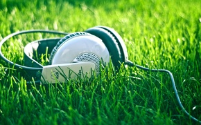 Wallpaper Headphones, music, nature, summer, cord, weed