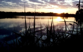 Picture lake, the evening, beautiful, spacey