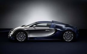 Picture Bugatti, Veyron, 2014, Ettore