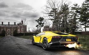 Picture Lamborghini, Fire, Yellow, Aventador, Supercar, LP720-4, 50 Anniversario Edition