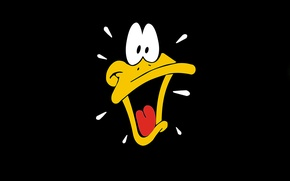 Picture duck, Daffy Duck, Daffy Duck, Looney Tunes
