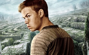 Wallpaper cinema, sky, man, boy, survivor, face, labyrinth, british, film, vegetation, 2014, The Maze Runner, Will ...