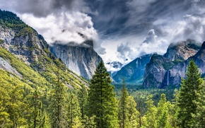 Picture Mountains, Trees, Landscape, Yosemite National Park