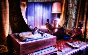 Picture music, background, gramophone