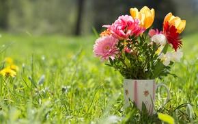 Wallpaper mug, grass, tulips, gerbera, bouquet