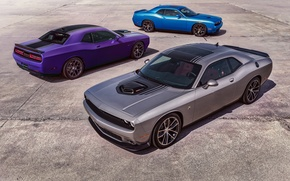 Picture Dodge, Challenger, Muscle Car