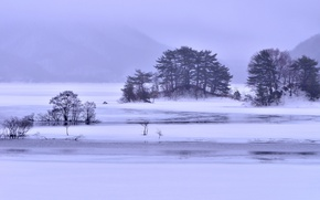 Picture ice, winter, snow, trees, mountains, fog, lake, Islands