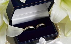 Wallpaper flowers, wedding, petals, box, decoration, ring