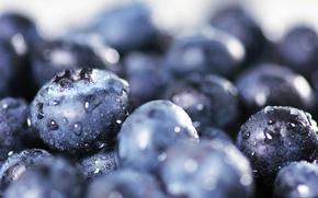 Picture drops, berries, harvest, blueberries