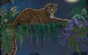 Wallpaper flowers, lies, animal, predator, leopard, look, art, leaves, the moon, tree, tail, night