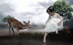 Picture style, deer, girl, installation
