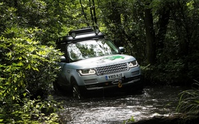Picture Land Rover, Range Rover, Wood, Hybrid, Off road, Land Rover Range Rover Hybrid 2015