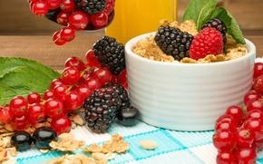 Picture berries, Breakfast, fresh, cereal, berries, breakfast, muesli