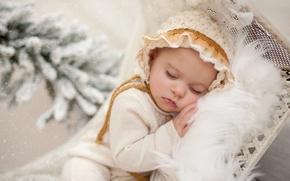 Picture snow, sleep, branch, fur, child, baby
