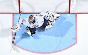 Wallpaper ice, sport, the game, gate, hockey, goalkeeper, NHL, nhl, Edmonton oilers, oil, Nikolai Khabibulin, edmonton ...